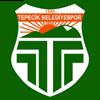 логотип команды Буйук Тепечикспор