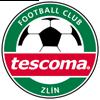 логотип команды Фастав Злин