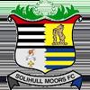 логотип команды Солихалл Мурс