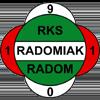 логотип команды Радомяк