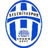логотип команды Чорум Беледиеспор