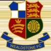 логотип команды Уильдстоун