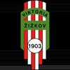 логотип команды Виктория Жижков