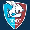 логотип команды Велес