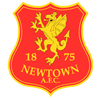 логотип команды Ньютаун