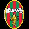 логотип команды Тернана Кальчо