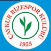 логотип команды Ризеспор