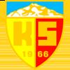 логотип команды Кайсериспор