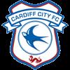 логотип команды Кардифф Сити