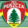 логотип команды Пушча
