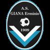 логотип команды Джана Эрминьо