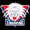 логотип команды Линчепинг (Ж)