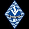 логотип команды Вальдхоф