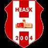 логотип команды Адиварспор