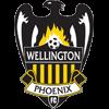 логотип команды Веллингтон Финикс