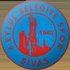 логотип команды Сивас Беледиеспор
