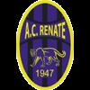 логотип команды Ренате
