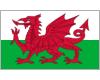 логотип команды Уэльс