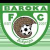логотип команды Барока