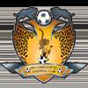 логотип команды Хоуганг Юнайтед