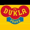 логотип команды Дукла