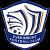 логотип команды Шицзячжуан Эвер Брайт