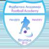 логотип команды Академия Пандева