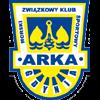 логотип команды Арка
