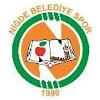 логотип команды Нигде Анадолу