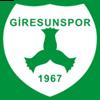 логотип команды Гиресунспор
