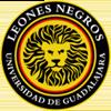 логотип команды Леонес Негрос