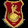 Каяани