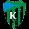 логотип команды Коджаэлиспор