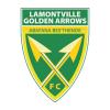 логотип команды Лемонтвилль Голден Эрроуз