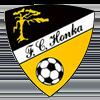 логотип команды Хонка