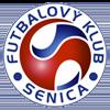 логотип команды Сеница