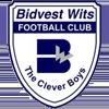 логотип команды Бидвест Витс