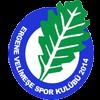 логотип команды Эргене Велимесе