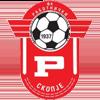 логотип команды Работнички