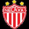 логотип команды Некакса