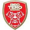 логотип команды Полис Теро