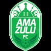логотип команды Амазулу