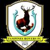 логотип команды Тампинс Роверс