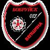 логотип команды Белшина