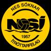 логотип команды Рунавик