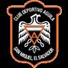 логотип команды Агила