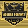 логотип команды Рионегро Агилас