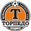 логотип команды Торпедо-БелАЗ