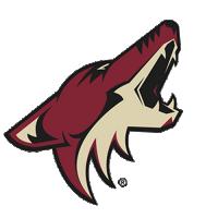 логотип команды Аризона Койотис