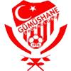 логотип команды Гюмюшханеспор